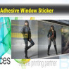 Window Sticker|Window Decals